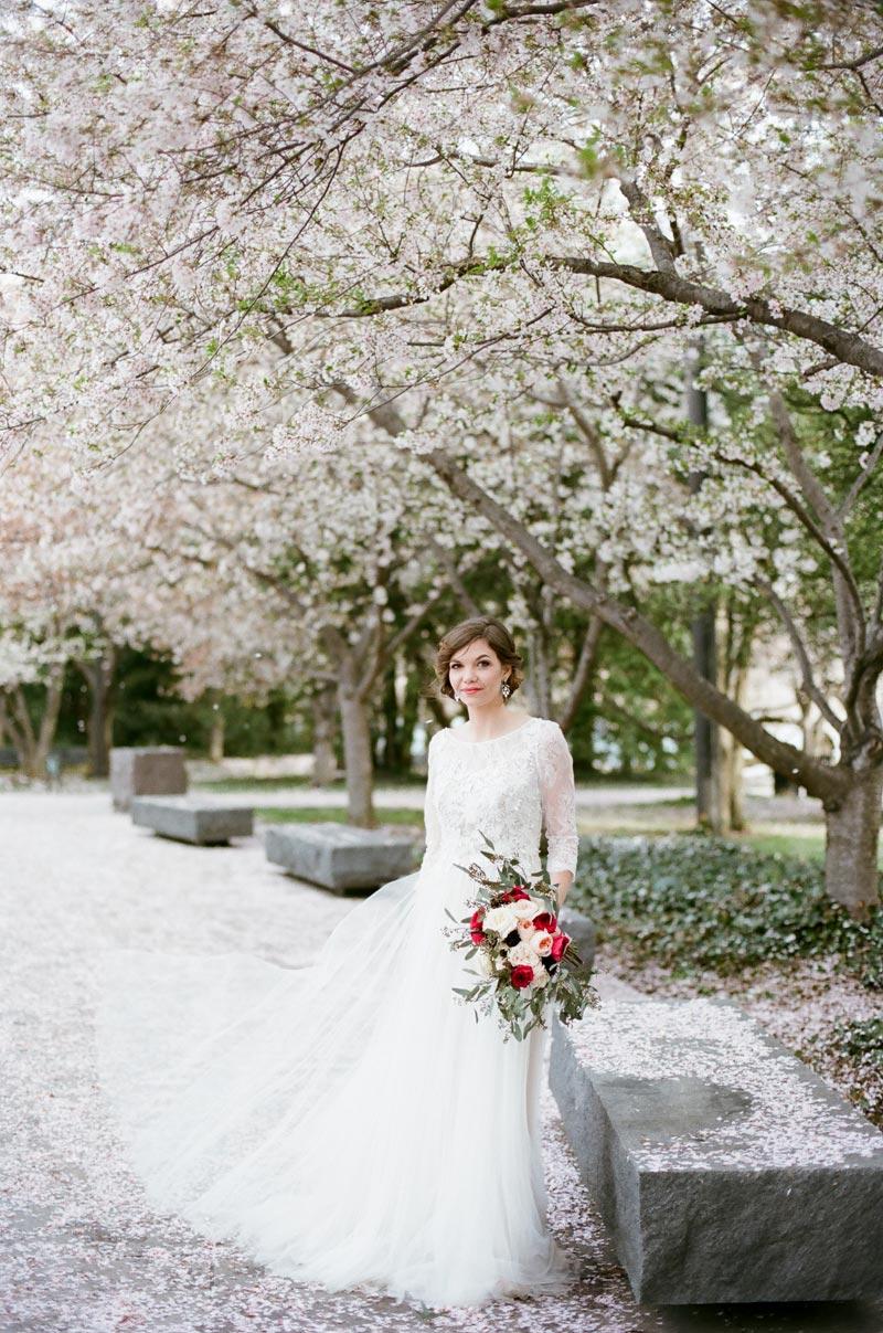 JennaHenderson_DC_CherryBlossoms_083.jpg