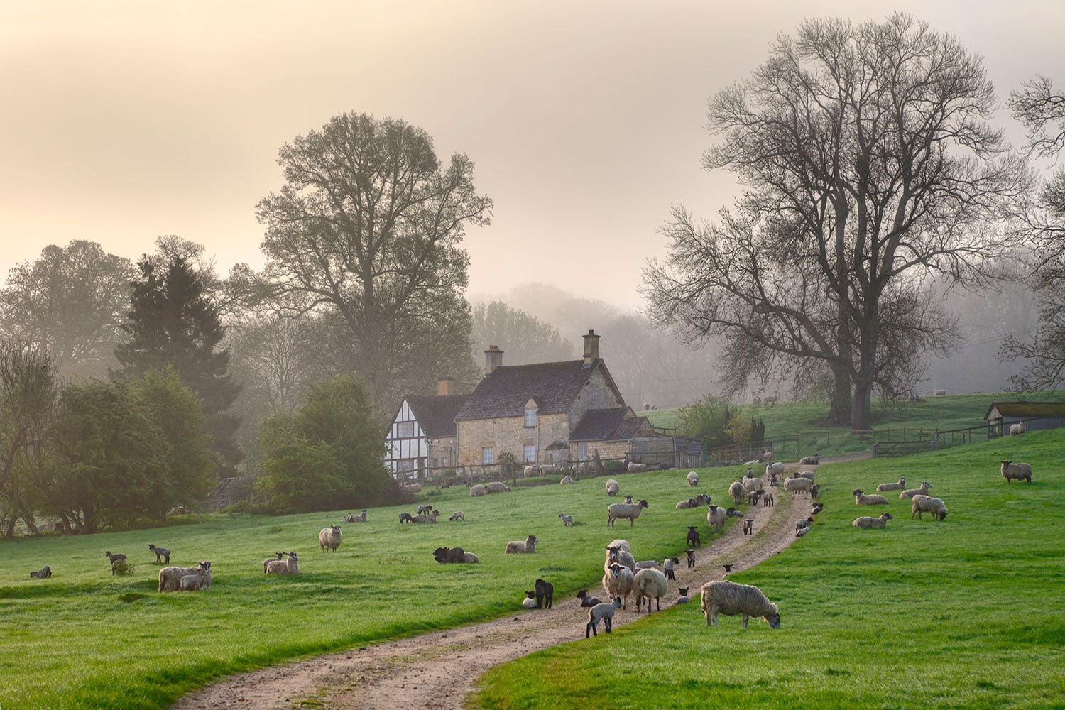 cotswold house in countryside for rural business support