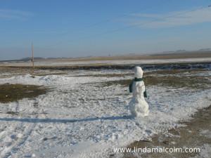 Iowa Olaf (1) sm