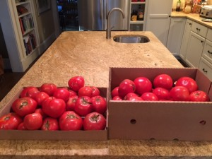 2 boxes of toms