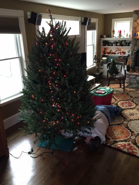 Ian under tree 2
