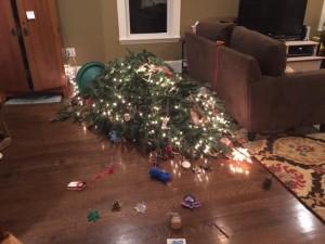 Tree crash