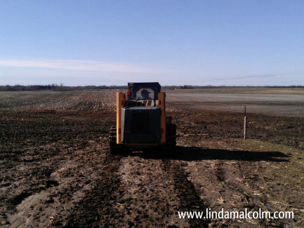 Iowa Dad skid loader wm