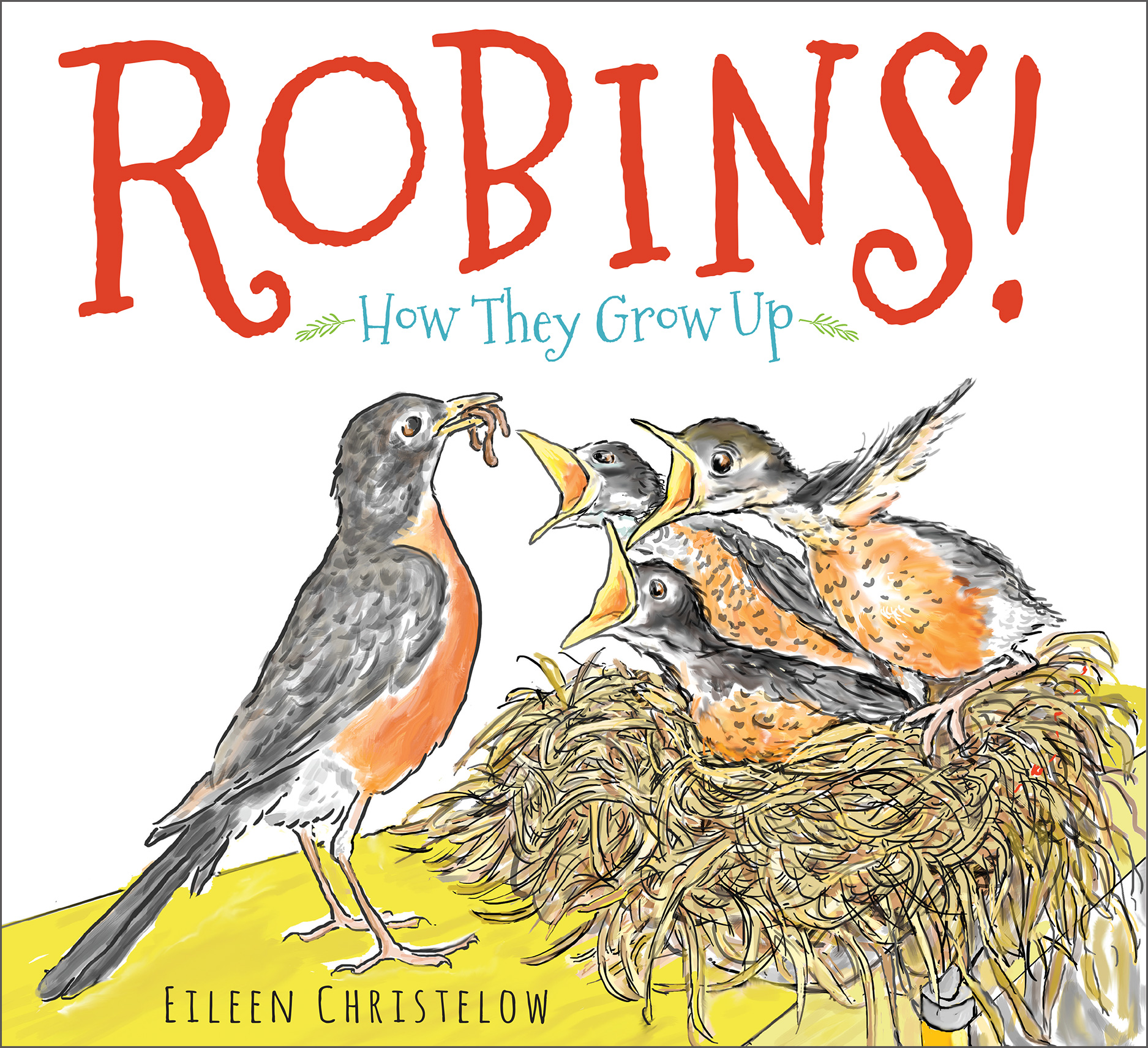 ROBINS! Cover.jpg
