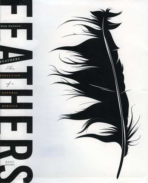 Feathers.Hanson.png