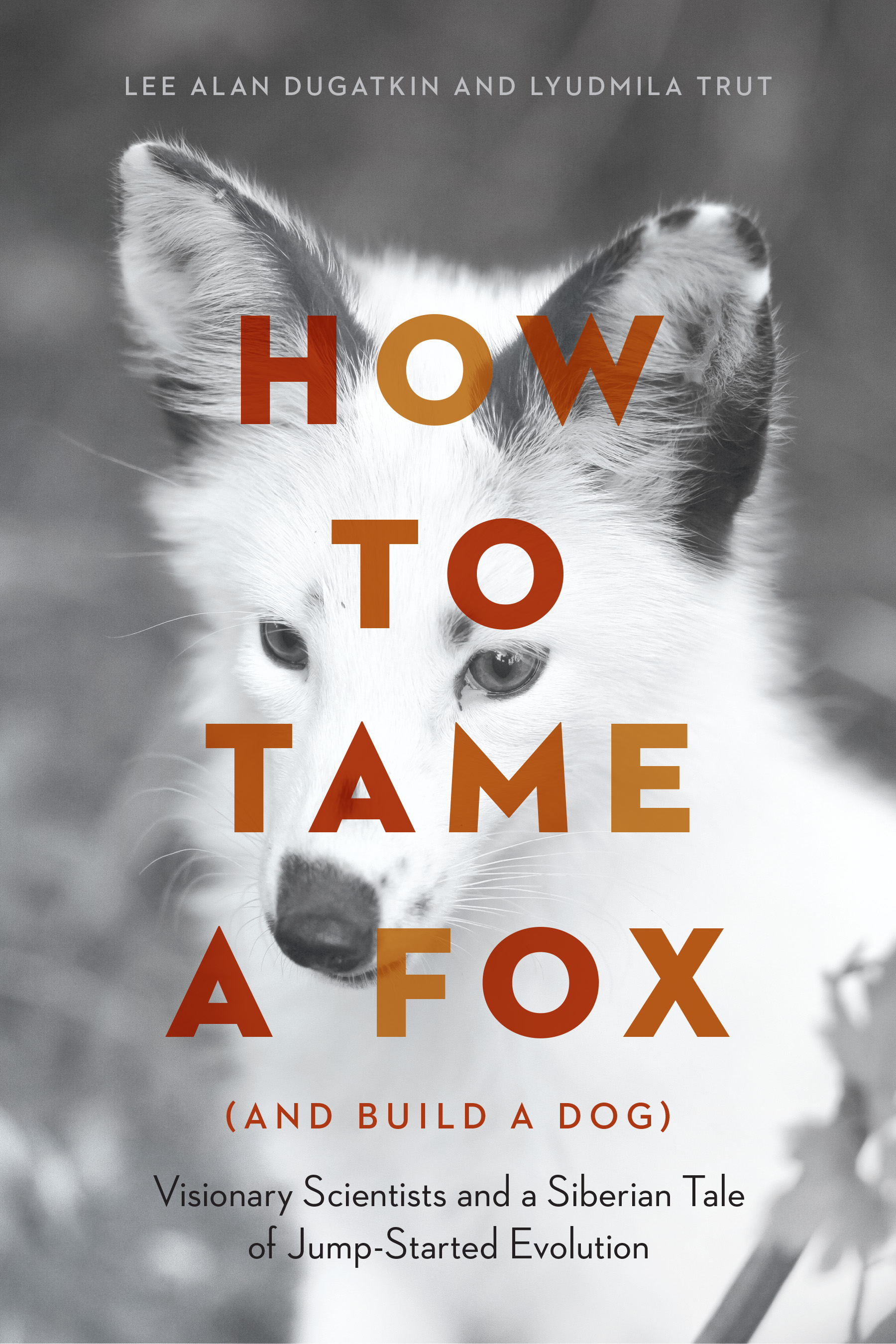 HowToTameAFox_FrontCover.jpg