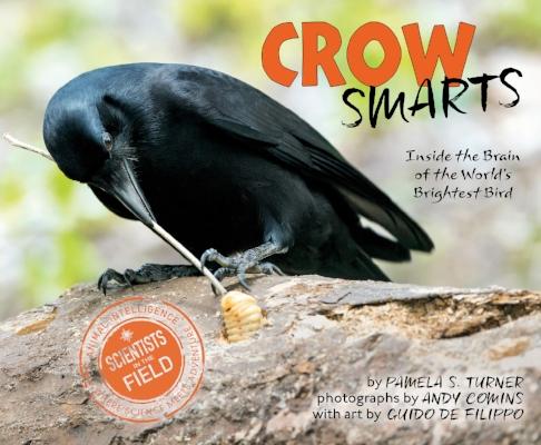 CrowSmarts.jpg