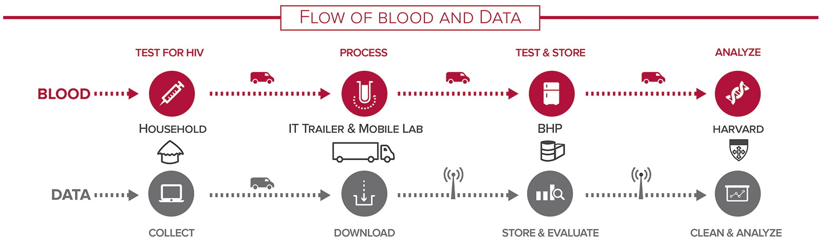 Figure 2. Flow of information from the first test of HIV to cleaning and analyzing the data.