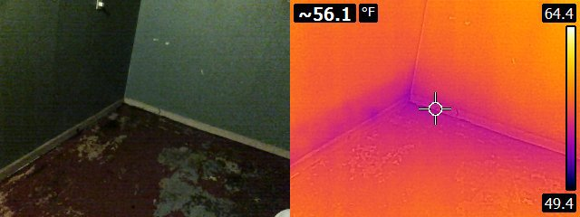 Thermal Camera of Water Damage