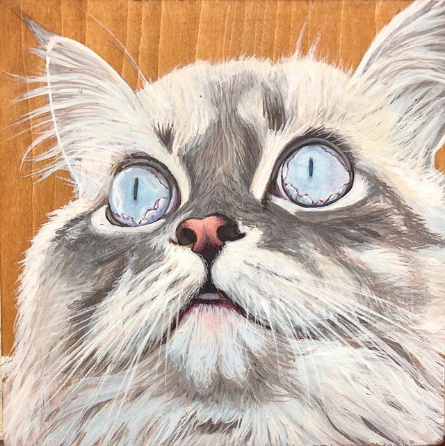 Work in progress #meow #funlittleguy #acryliconpanel #okanaganartist #bcartist #realismish #stillhavingfun #😀