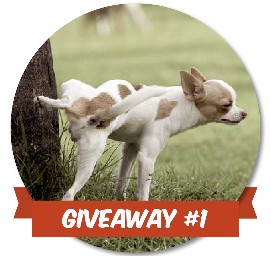 Give_Away-02-02.png