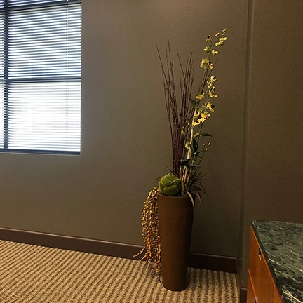 plant horizontal-sm.jpg