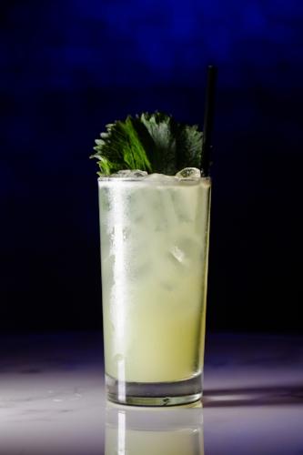 *Stage G Cocktail 1500.jpg