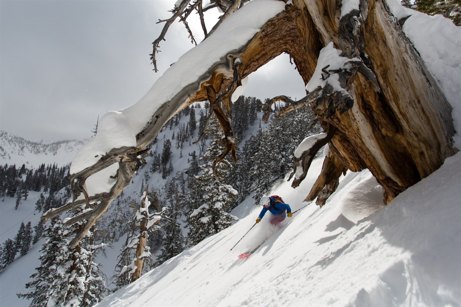 Skiing in gorgeous solitude at Solitude.  Wray Sinclair | Courtesy Visit Salt Lake
