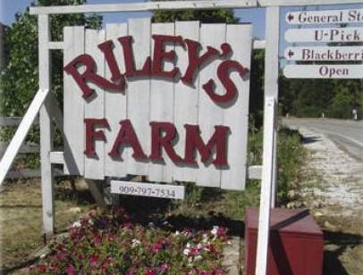 Riley Farms