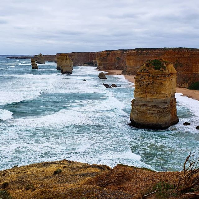 It was a chilly and overcast day but the view was still pretty spectacular! Took a trip up Great Ocean Road to see The Twelve Apostles. These famous limestone rock formations were carved out of the coastline by the pounding waves and continue to erode away at a rate of 3 centimeters per year. Contrary to its' name, there were never 12 rocks, only 8. One collapsed in 2005, leaving only 7 remaining. • • • • • • • #takemetoaustralia #roadtripaustralia #australia_vic #australiagram_vic #australia_oz #digitalnomadlife #postcardfrom #alwaystraveling #alwaysbetraveling #wanderlust_tribe #wanderlusters #travellust #amazingplacestovisit #worldpics #travelpost #travelgoal #iamtb #travelbloggeres #digitalnomads #igpassport #nomadiclife #travelprenuer #locationindependent #adventureseeker #digitalnomadlifestyle