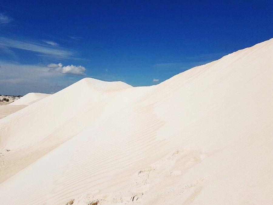 (The Sand Dunes - Lancelin - Australia)
