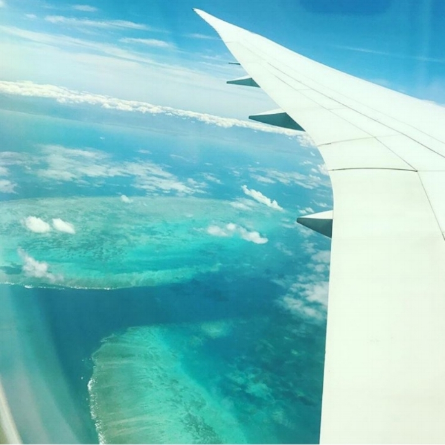 (The Great Barrier Reef - Cairns)