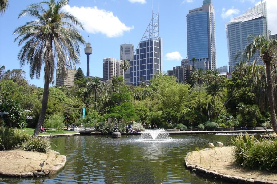 Kris-Albert-Tremellen-Royal-Bot-Gardens.jpeg