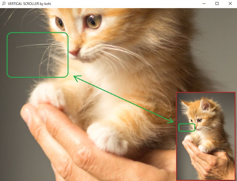 You can even see the cat's whiskers ! Scrolled Image example/ 猫のひげまではっきり確認。スクロールされた画像の例