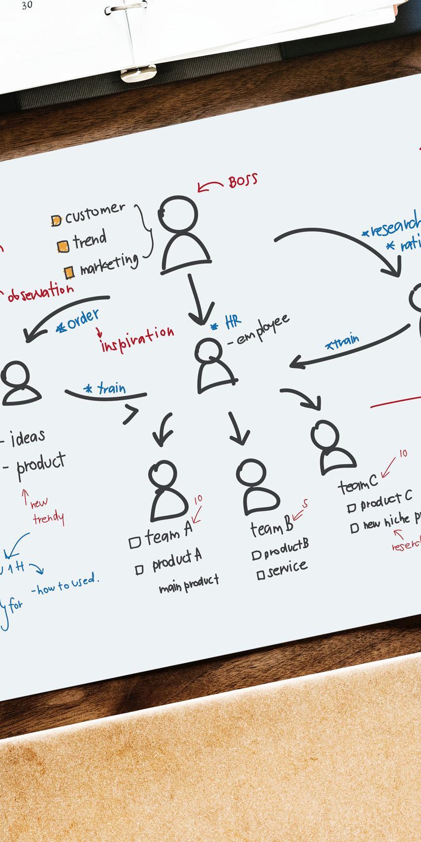 chart-flow-chart-plan-900108-00__.jpg