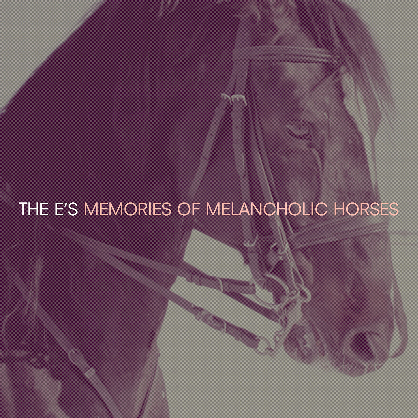 The-Es-Memories-of-Melancholic-Horses-Artwork-RGB.jpg