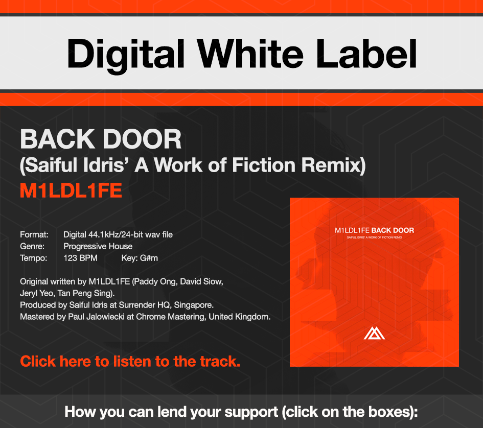 DWL-Promo-Back-Door-Remix-Top.png