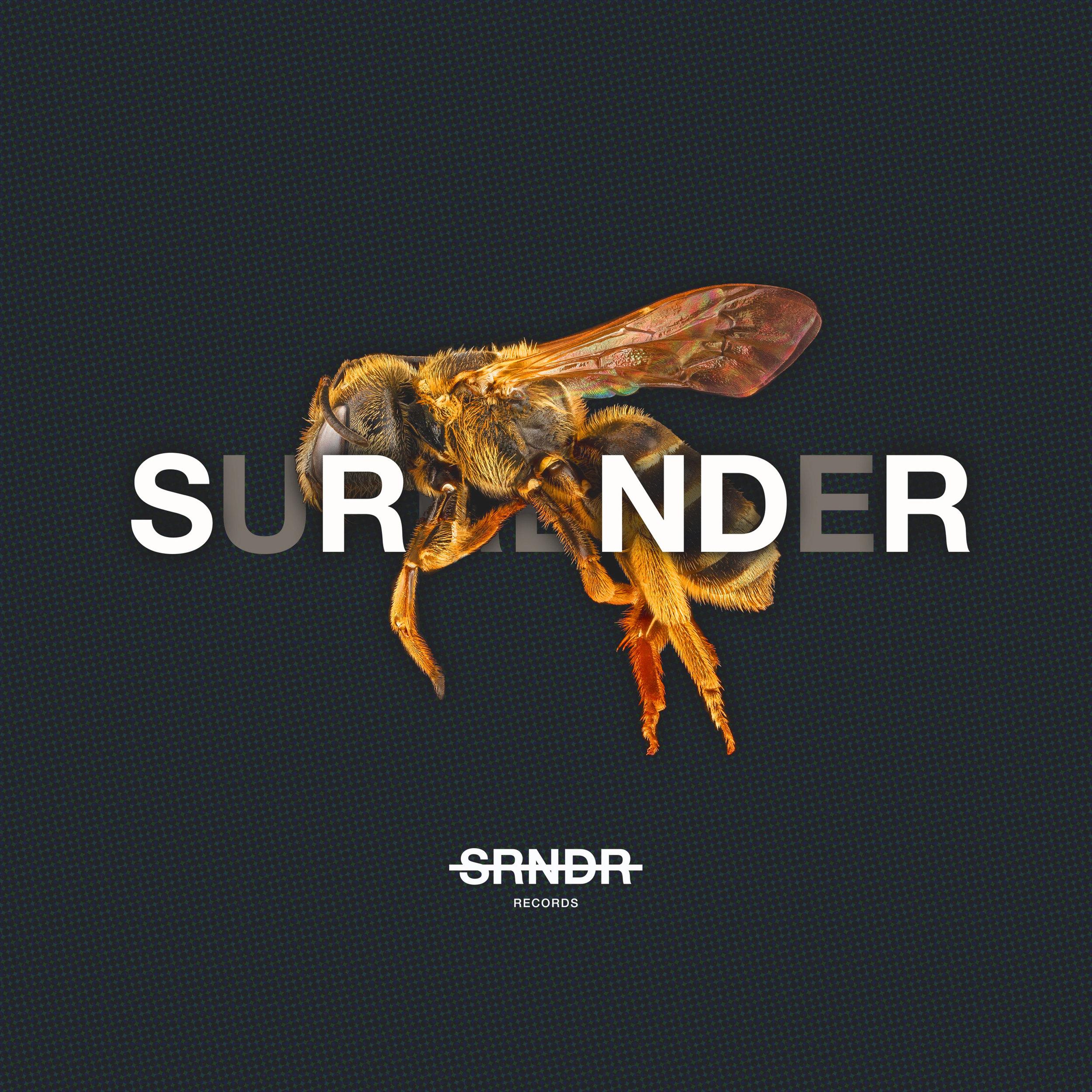 SRNDR-Music-Playlist-Cover.jpg