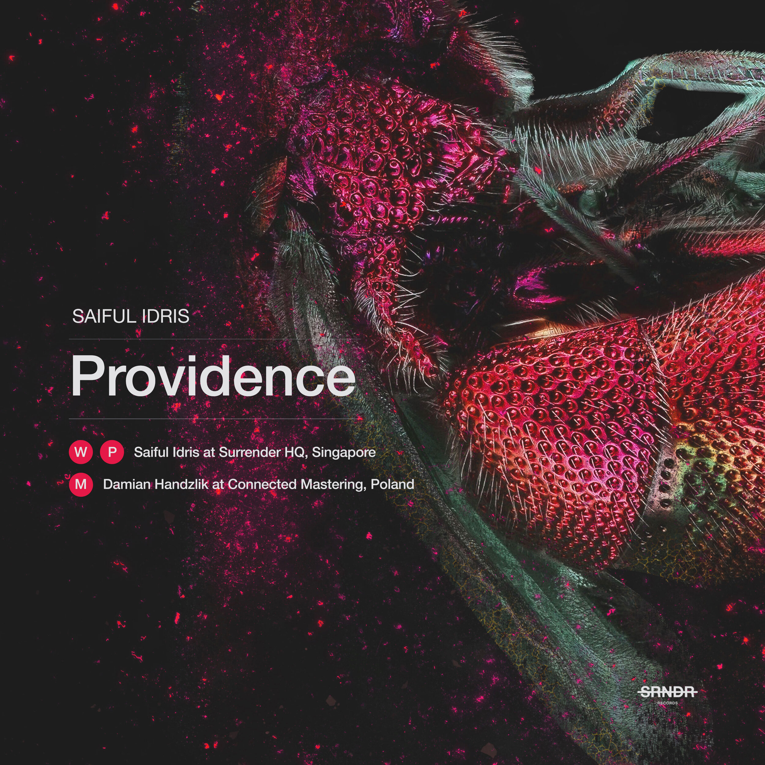 Providence-Final-Alt.jpg