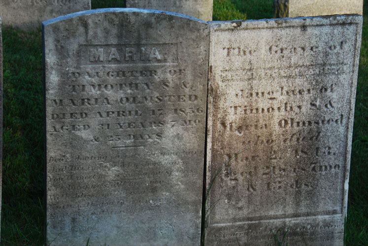Gravestones are America's earliest sculpture. Among early American artifacts they are unique in that each is dated and most are found in their original settings surrounded by similar objects from the same period. The majority of artifacts that have survived 200-300 years—paintings, furniture, silver, quilts, books, pottery, tools, and nearly everything we now have from the Colonial period—have been relocated to museum settings and other collections.