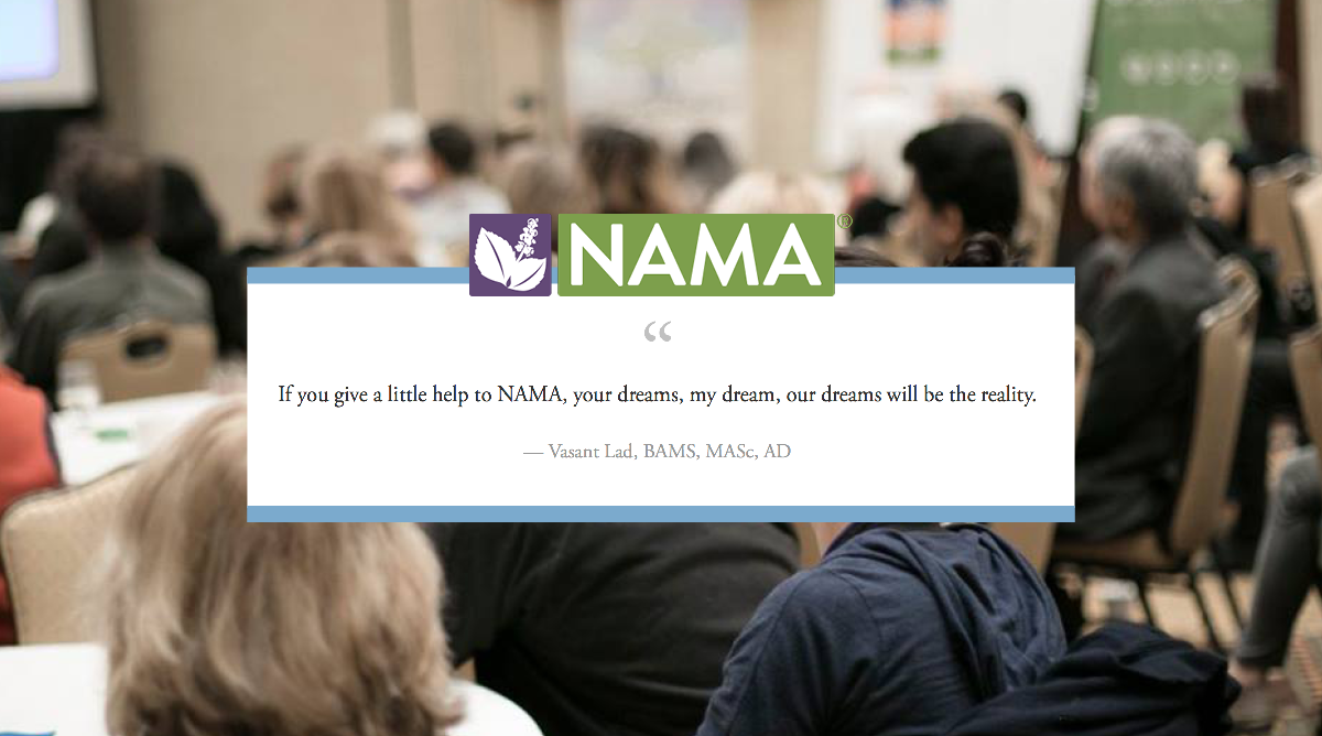 NAMAAC Fundraiser