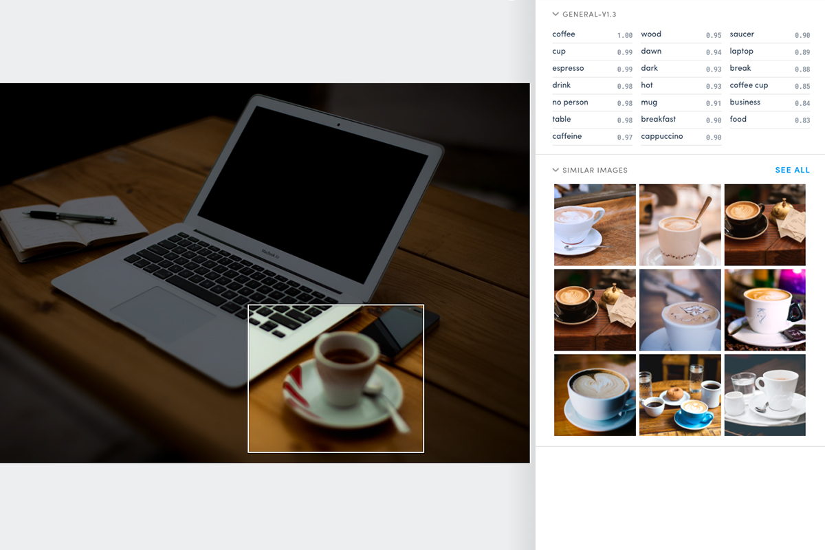 Clarifai can read an entire image or focus on one aspect