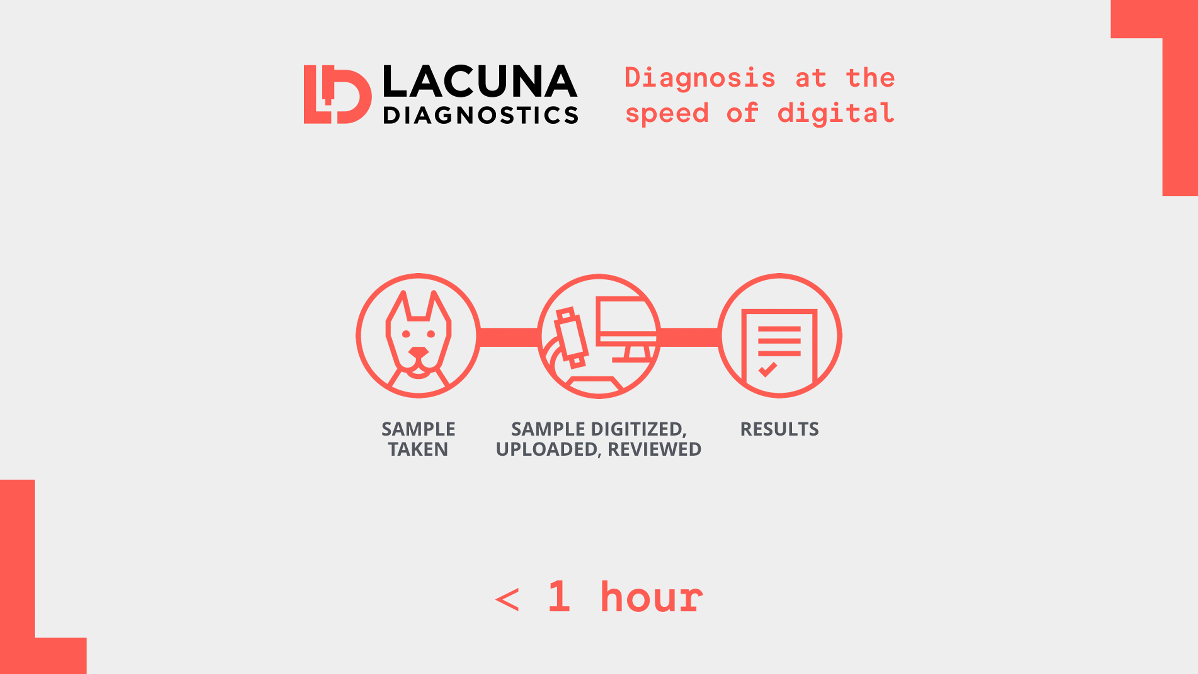 Lacuna-Diagnostics_03.jpg