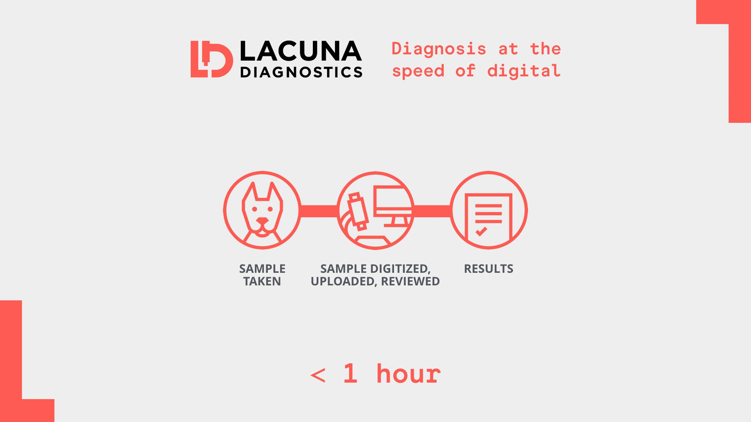 Lacuna-Diagnostics_03.jpg