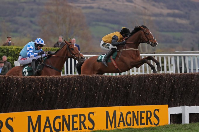 Croco Bay winning at Cheltenham