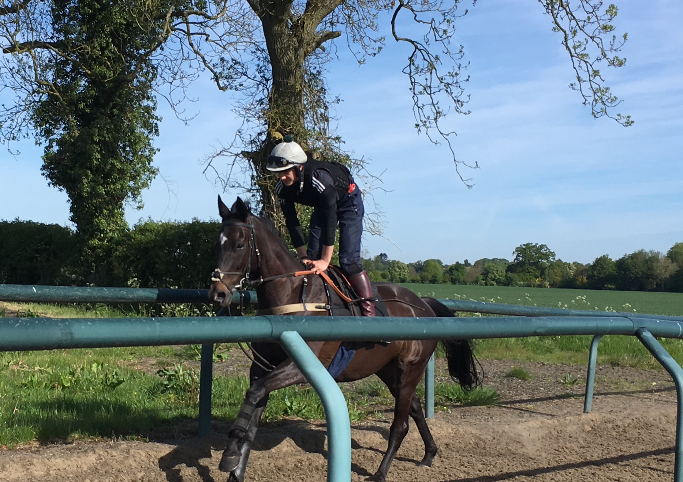 George & Wisecracker in preparation for their charity race