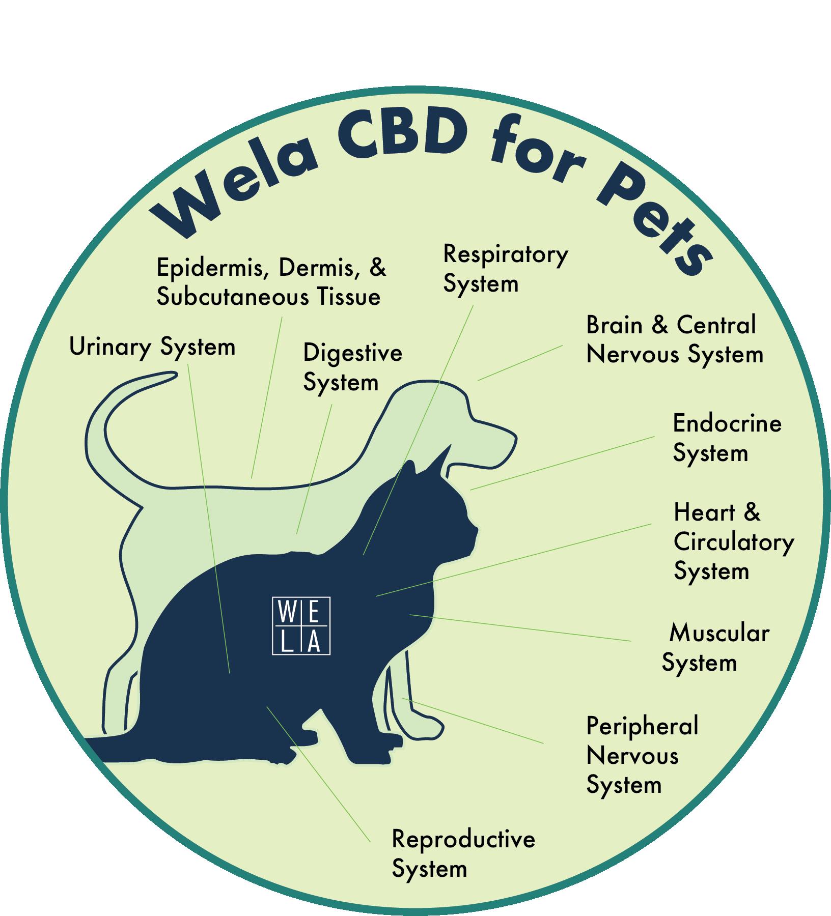 wela cbd for pets.png