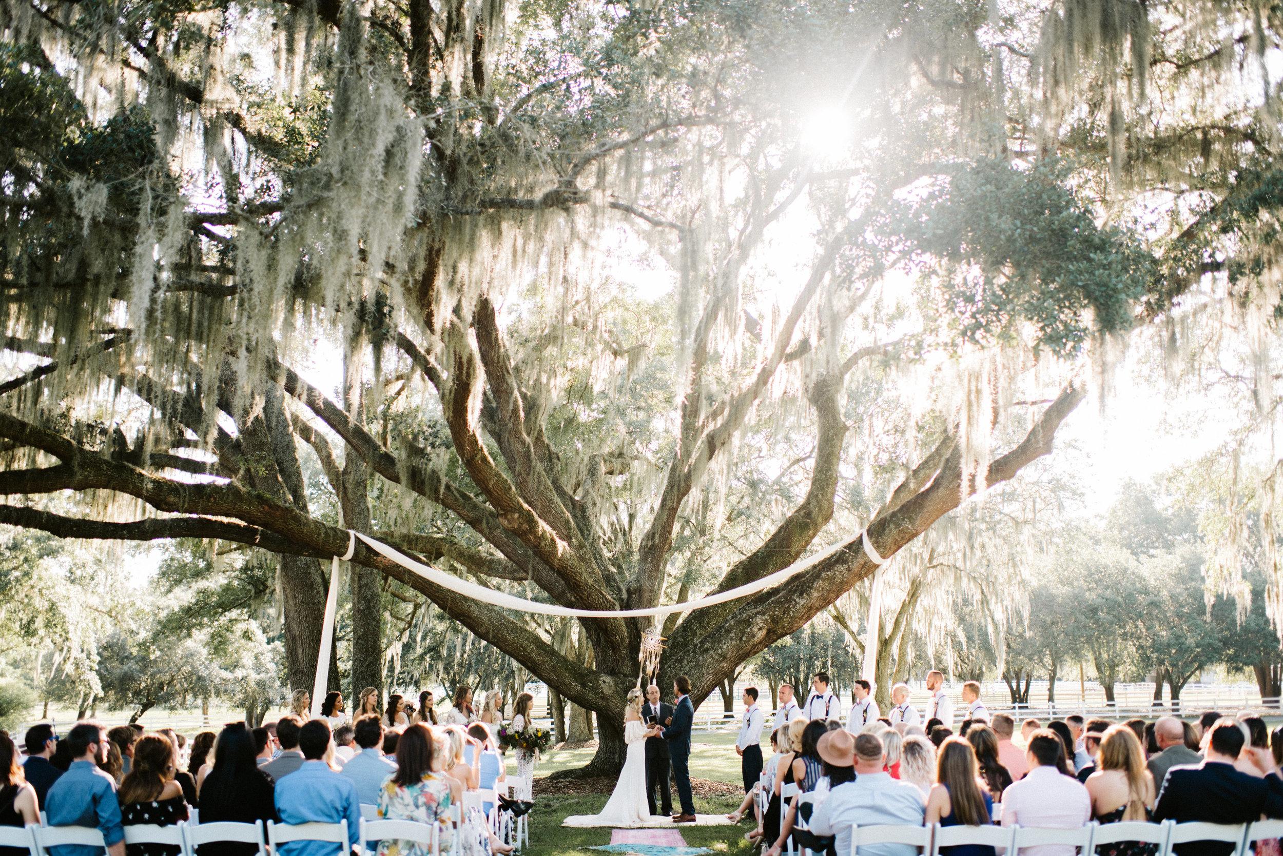 Outdoor wedding ceremony site, Tampa