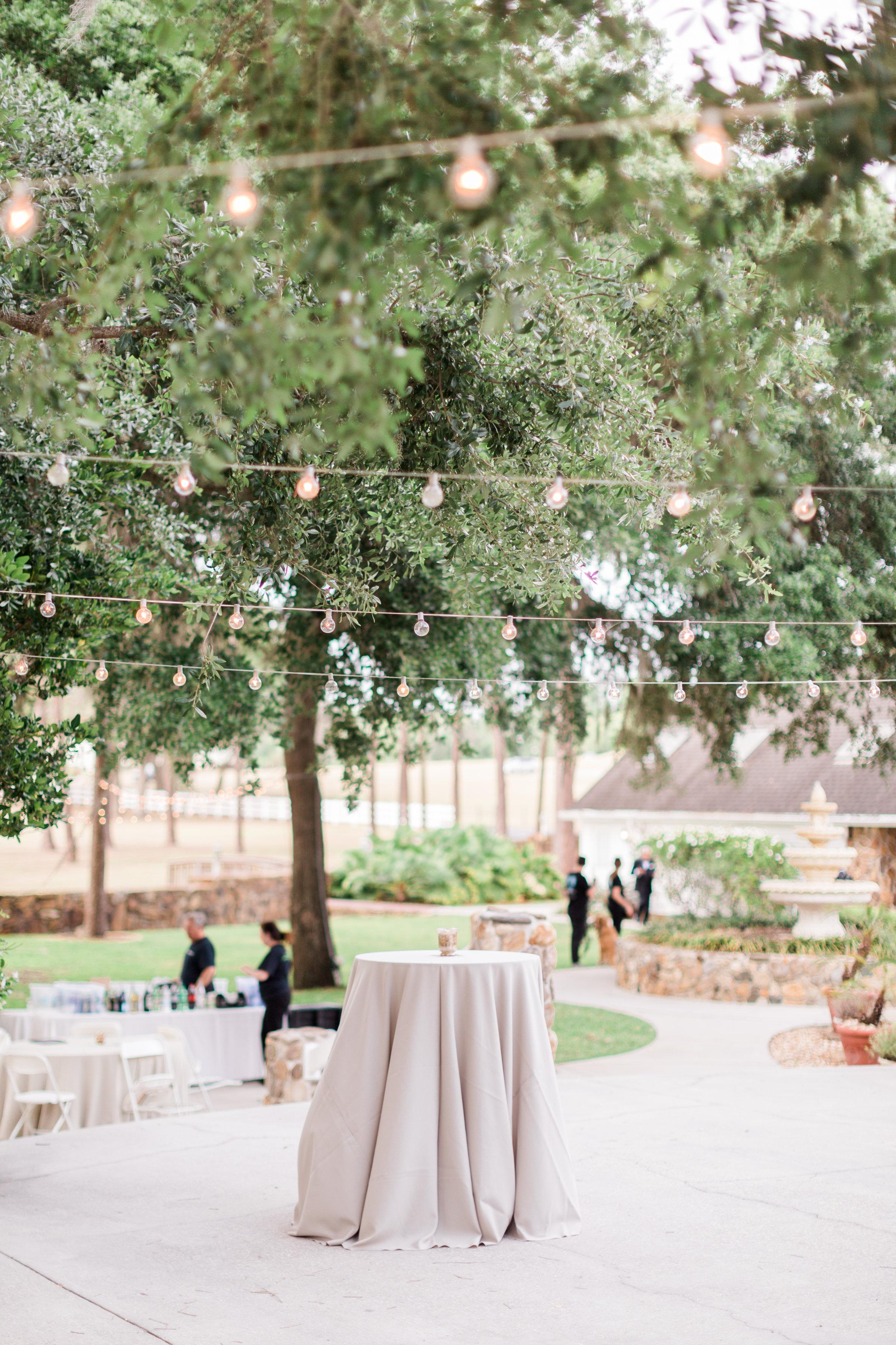 Tampa Wedding Venue-0079.jpg