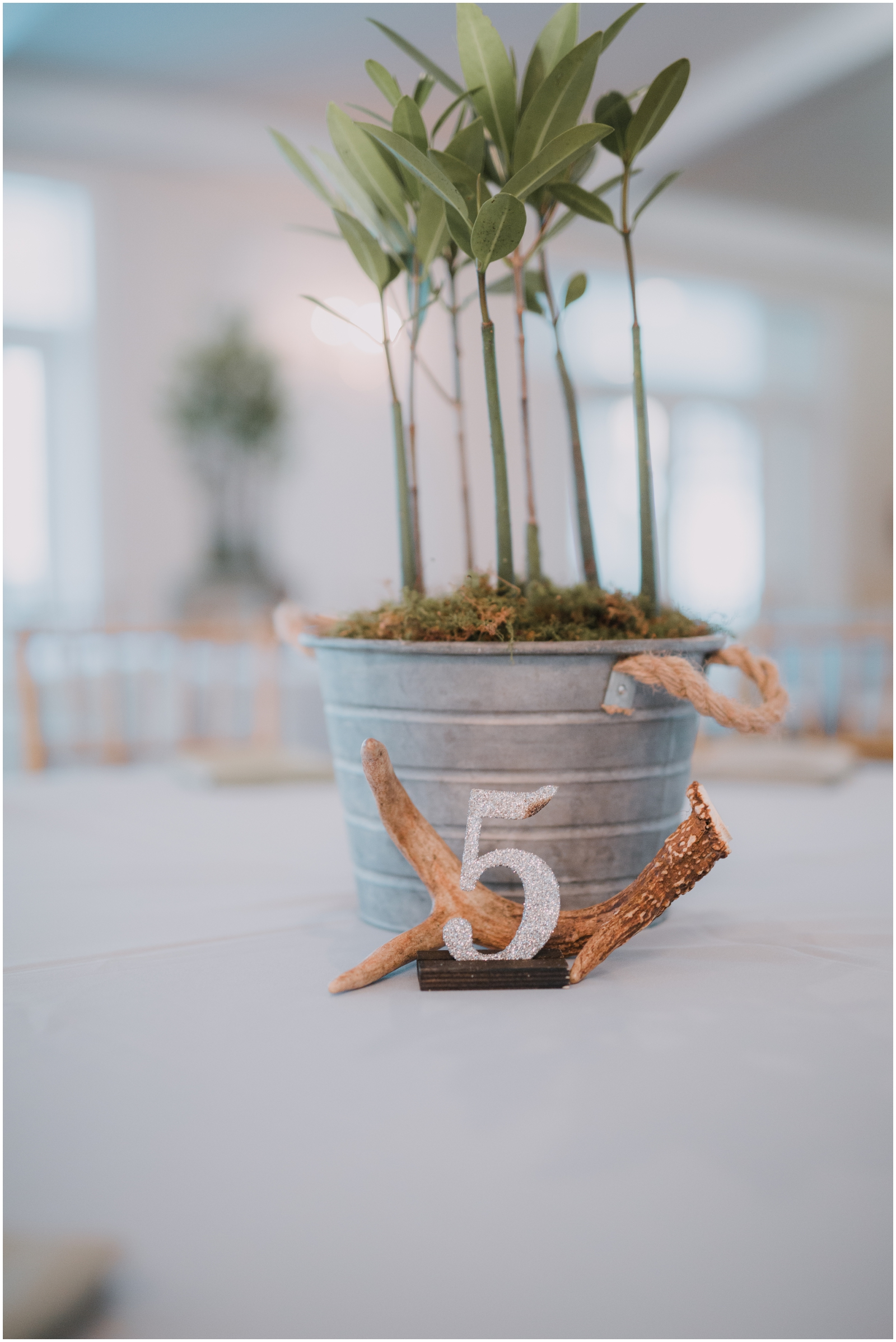 Dade City Wedding Venue. Stonebridge at The Lange Farm_0190.jpg