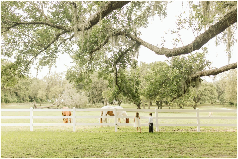 Tampa Wedding Venue - Stonebridge Weddings_0738.jpg
