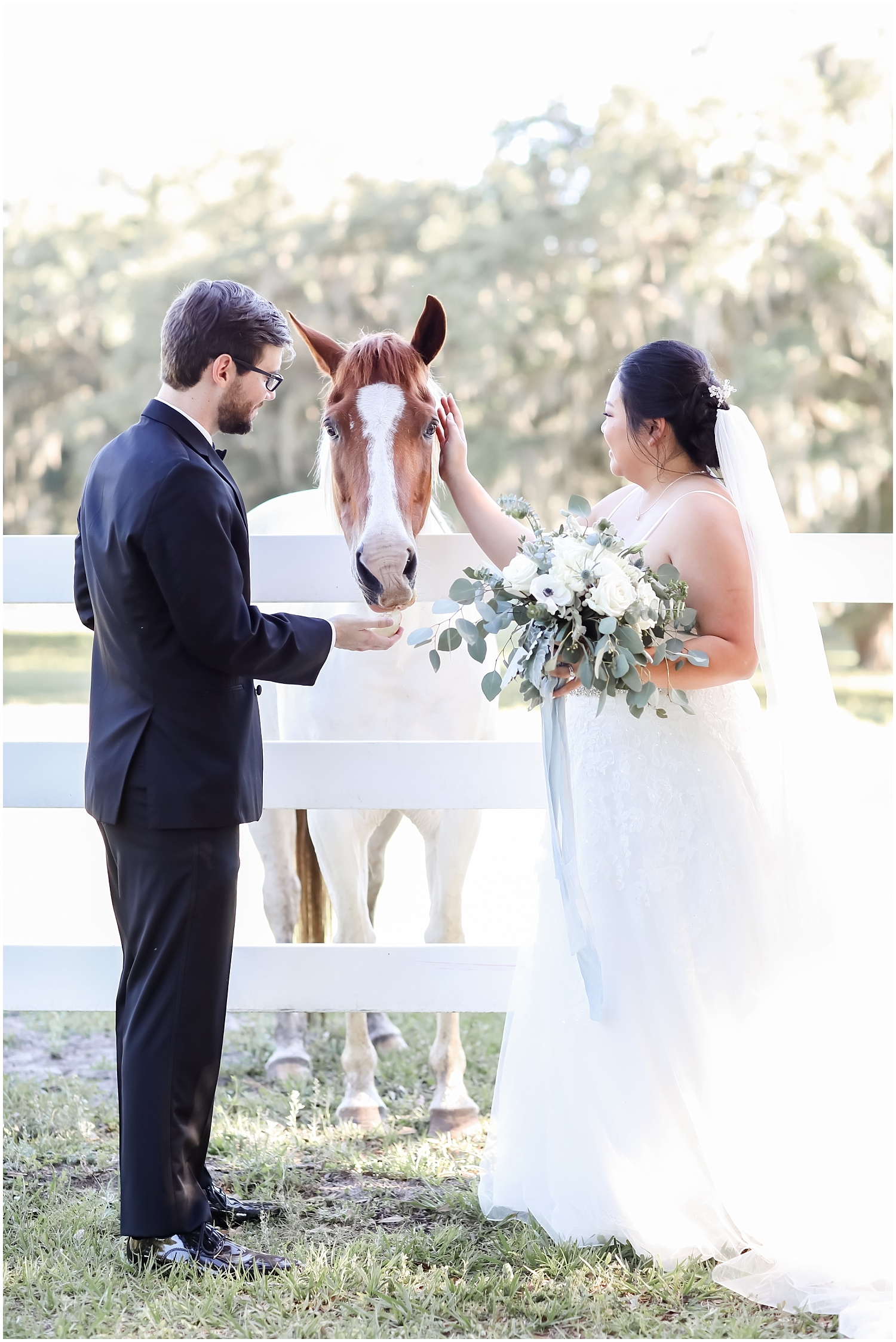 bride and groom with a horse at the Stonebridge wedding and events