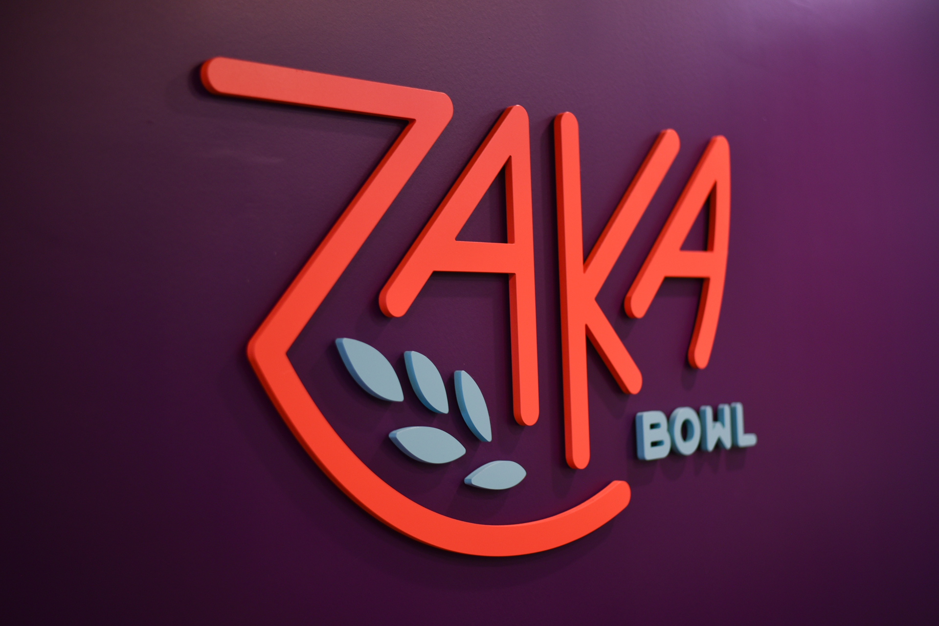 Zaka-Environment-2.jpg