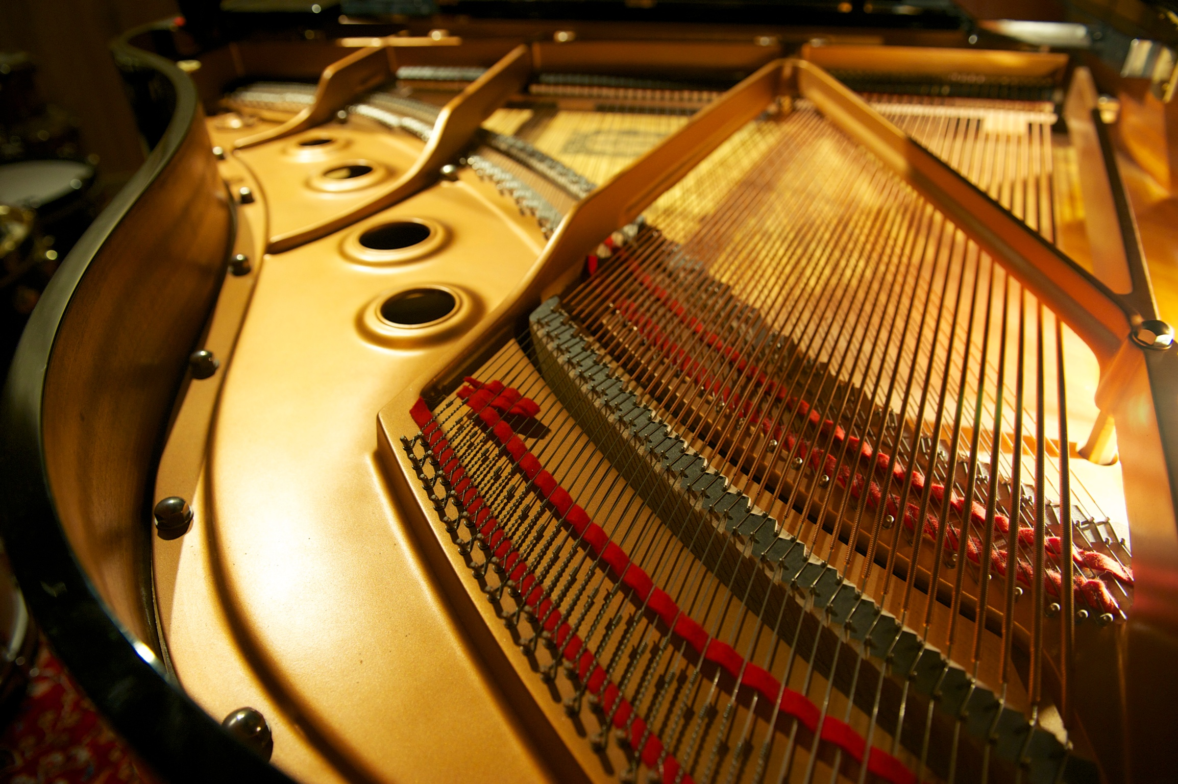 WWP_Inside Piano 2.jpg