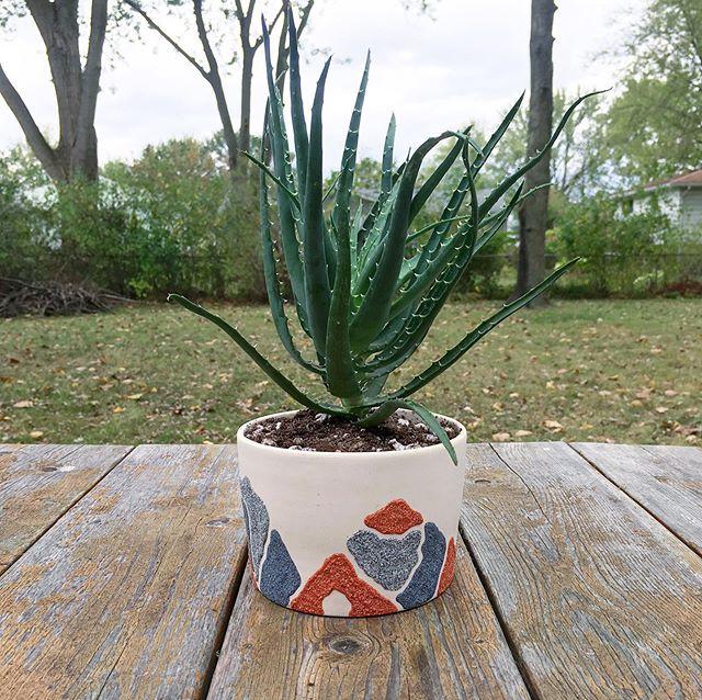 Happy Friday! I hope you all have a great weekend enjoying this beautiful fall weather 🍂 • • • • #ragpottery #pottersofinstagram #pottery #ceramics #makersgonnamake #handmade #handcrafted #artisan #porcelain #handmadepottery #functionalpottery #ohiocreative #ohiomade #handmadeinohio #ceramicplanter #handpainted #duncanceramics #houseplants #indoorplants #succulentlove #plantlove #elyriaohio