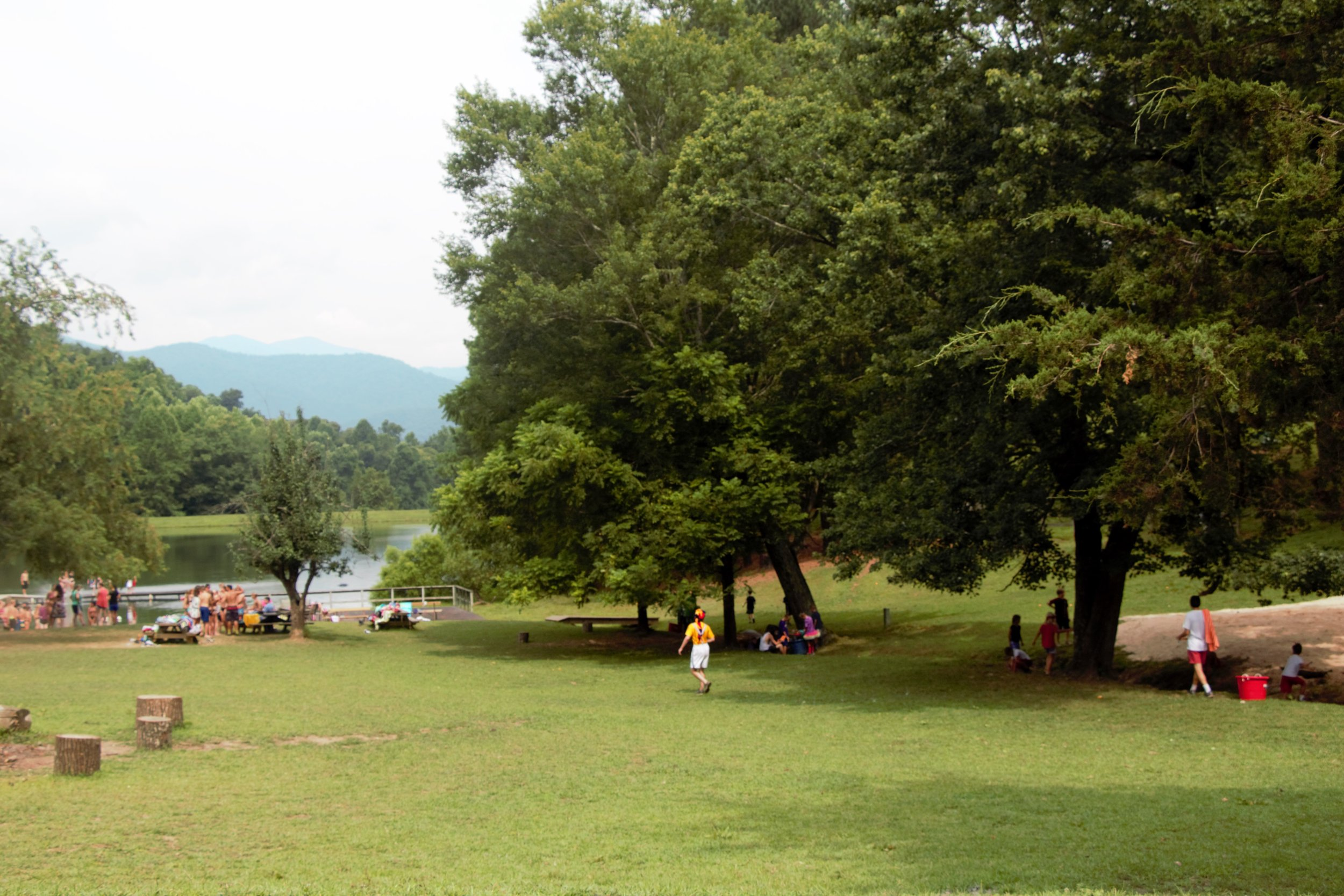 campaction.jpg
