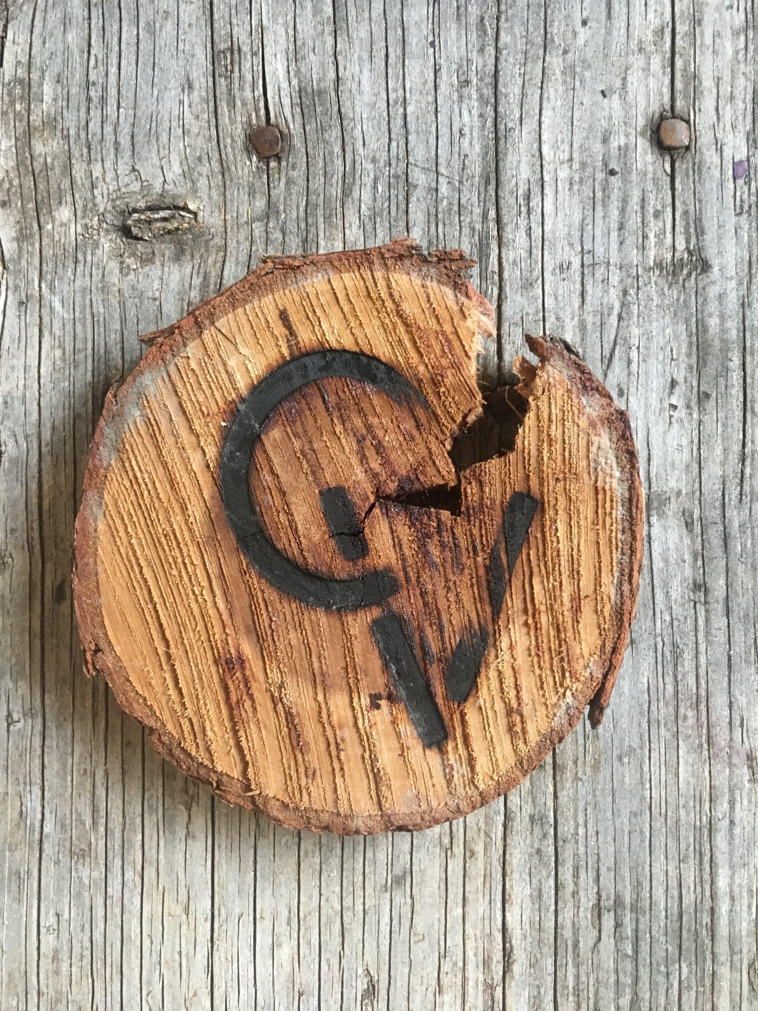 cv wood logo.JPG