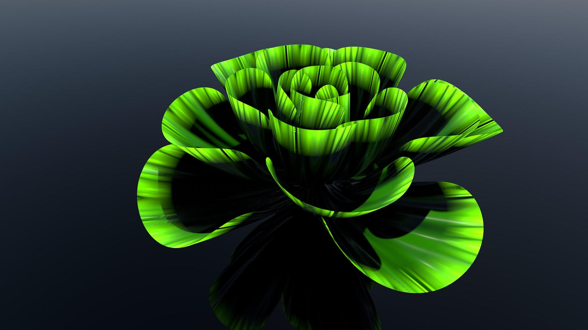Flower2_0040.jpg