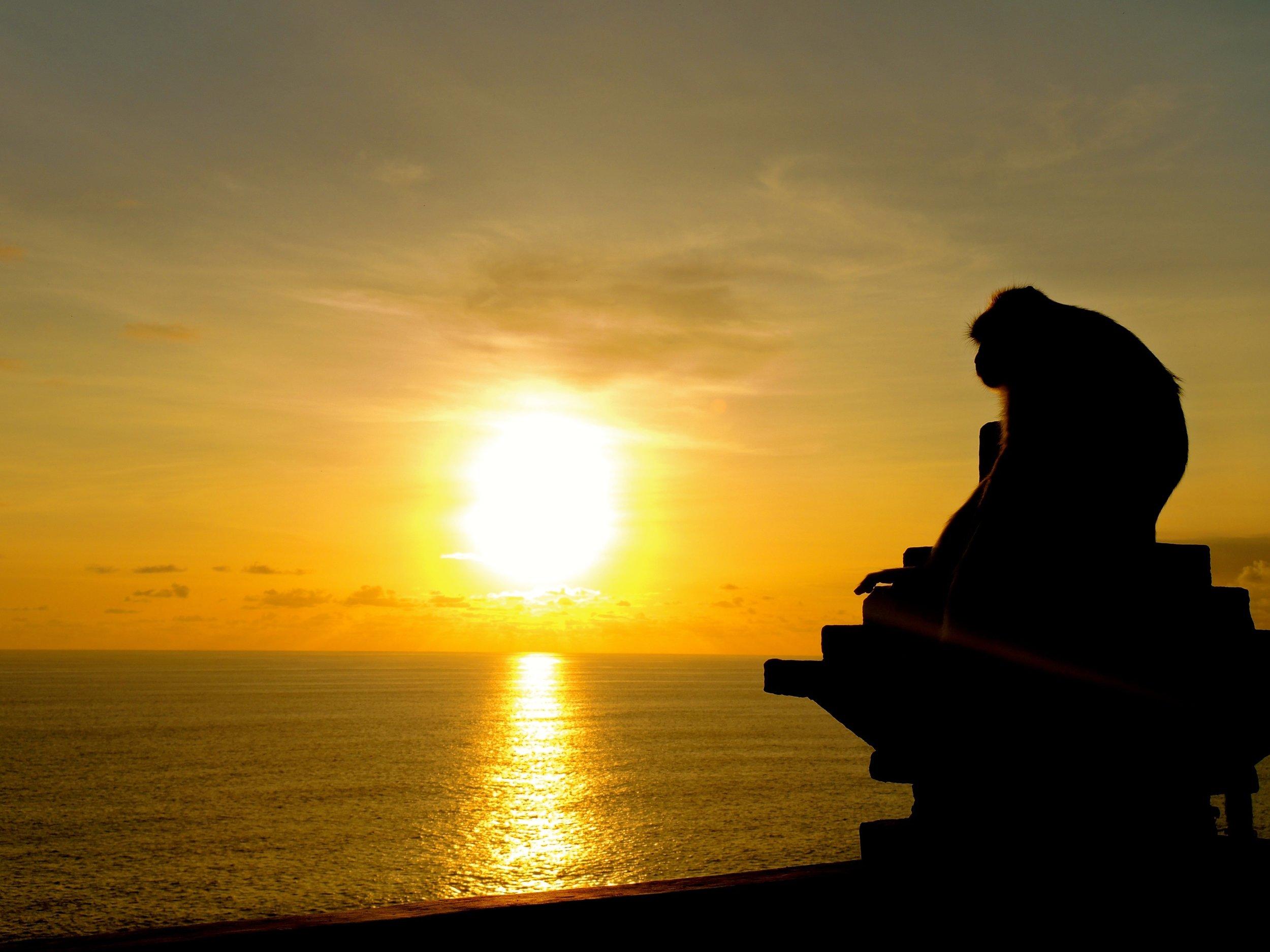 sea-water-ocean-horizon-silhouette-sun-752546-pxhere.com.jpg