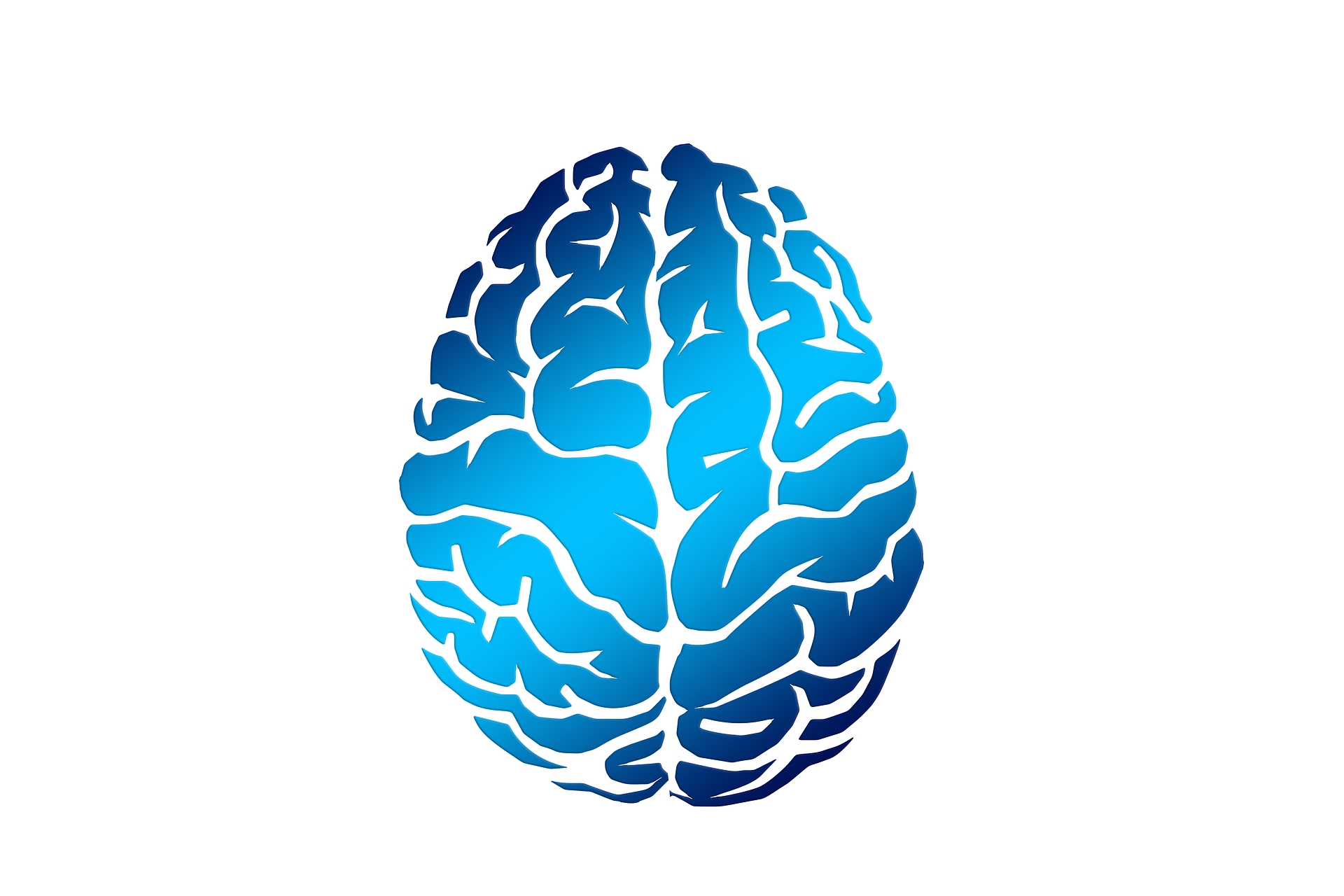 Brain; thinking and reasoning skills at Canto Speech Therapy Online
